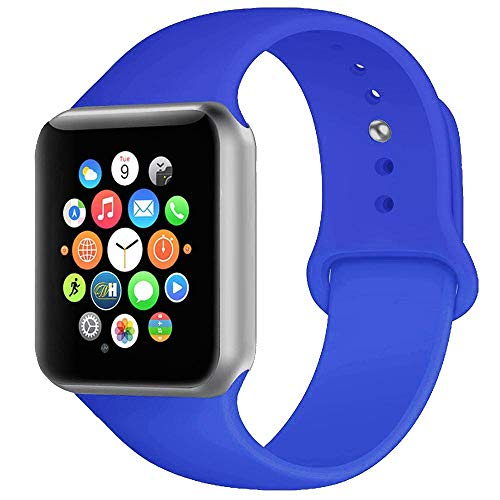 BOTOMALL Compatible With Iwatch Band 38mm 40mm 42mm 44mm Classic Silicone Sport Replacement Strap Bracelet for Iwatch all Models Series 4 Series 3 Series 2 Series 1 (royal blue,42/44mm ()