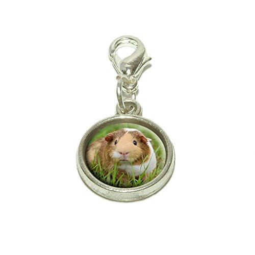 Guinea Pig Cavia Dangling Bracelet Pendant (Pig Italian Charm)
