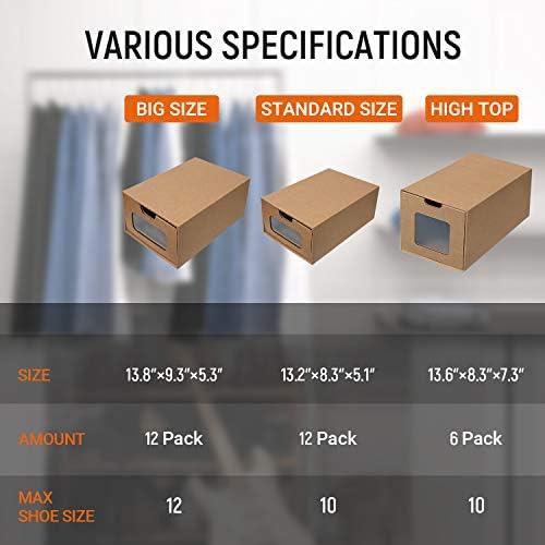 Cardboard transparent _image1