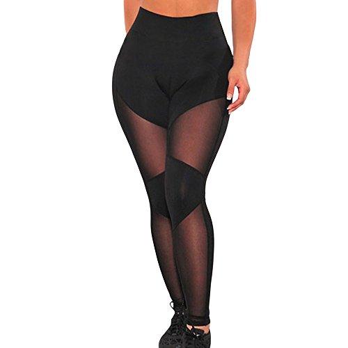 Miss Petite Unlined Jacket (FQHOME Womens Black Sheer Mesh Gym Leggings Size L)