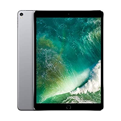 Apple iPad Pro 10,5 pulgadas (64 GB, Wi-Fi) gris espacial (Modelo precedente) (Reacondicionado) 14