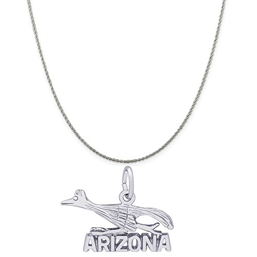 Rembrandt Charms 14K White Gold Arizona Road Runner Charm on a Rope Chain Necklace, 16