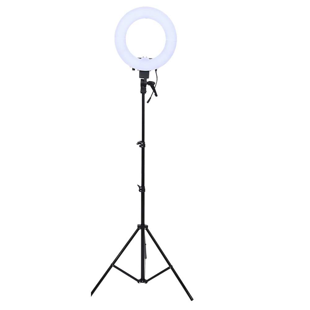 GWJ- 40W リングライト LEDリングライト バイカラー キャリーバッグ 電話ホルダー付き バイカラー ミラーデスクトップスタンド キャリーバッグ LEDリングライト メイクアップ/YouTube/ビデオ撮影/ポートレート/自撮り/ライブ/ウェブキャスト/静止画/写真/カメラ/電話用 B07GFKFHD2, ヴィーナスラボ:62845542 --- ijpba.info