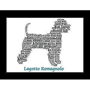 Lagotto Romagnolo Dog Wall Art Print - Personalized Pet Name - Gift for Her or Him - 11x14 matted - Ships 1 Day 3