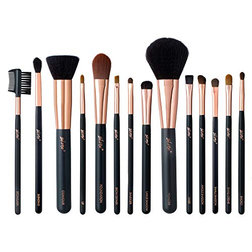 Professional Makeup Brush Set - Skone Luxe Pro Makeup Brushes, 14 pc Set