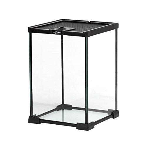 Reptizoo Mini Reptile Glass Terrarium Full View Visually Appealing