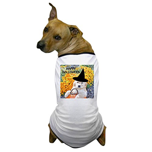 (CafePress - Halloween Funny Puppy Witch Coaster; P Dog T-Shirt - Dog T-Shirt, Pet Clothing, Funny Dog Costume)