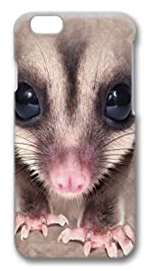 Big Face Sugar Glider Polycarbonate Hard Case Cover for iphone 6 plus 5.5 inch 3D