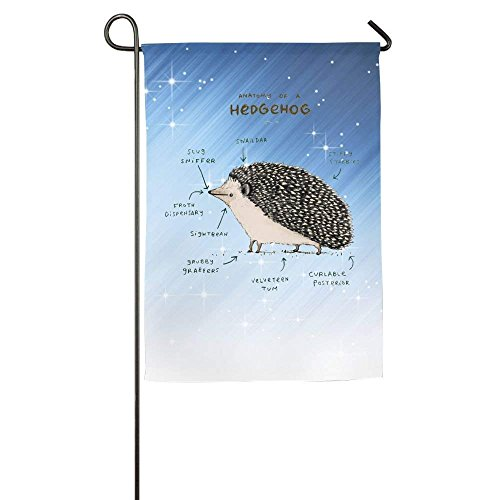 Clustersn Anatomy Of A Hedgehog Home Family Party Flag Hipster Welcomes The Banner Garden Flags