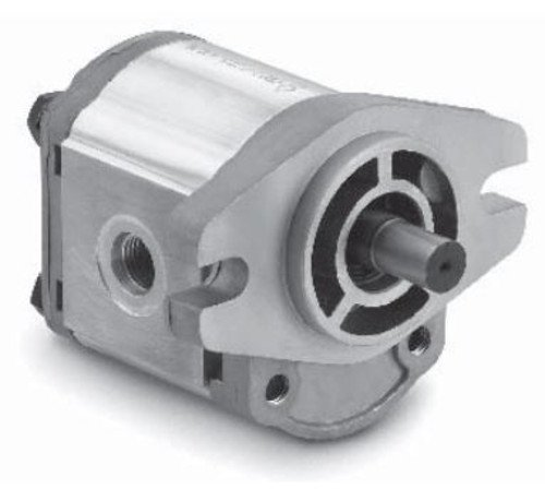 Chief Gear Pumps (1/2'' DIA. Keyed Shaft) GP-F10-20-P-C: 2 Bolt AA Flange Mount, 0.12 CID, 1.04 @ 2000 RPM, 3770 PSI, 5000 RPM, SAE #8 Inlet and SAE #6 Outlet Ports, CW ROTATION, 252126