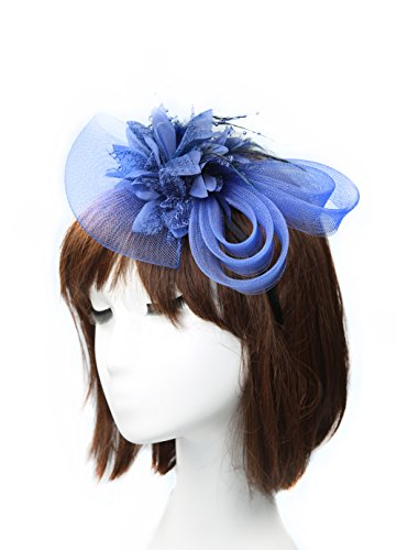 Anita Women's fascinators Small hairpin feather hat (One size, Royal blue)