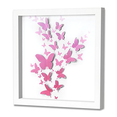 Green Frog Upgraded 2018 Shadow Box Frame 16 X 16 Inch with Butterfly Inner Display Board
