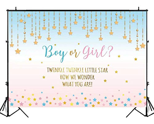Funnytree 7X5ft Pink and Blue Gender Reveal Party Backdrop Boy Or Girl Twinkle Twinkle Little Star Photography Background Gender Surprise Photo Banner for Baby Shower Photobooth Cake Table Decoration ()
