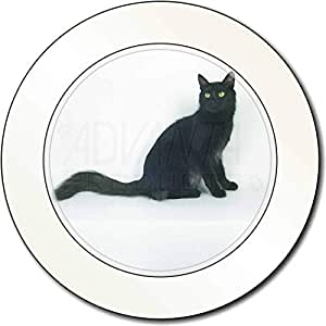 Negro del gato del angora turco Impuesto de matriculación disco regalo permision