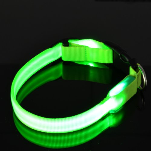 "LED Flashing Small Green Dog Collar: 1"" wide, Adjusts 11-14"""