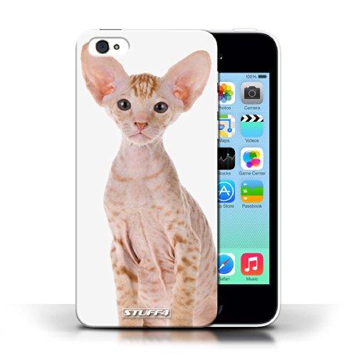 iCHOOSE Print Motif Coque de protection Case / Plastique manchon de telephone Coque pour Apple iPhone 5C / Collection Espèces de chats / Peterbald