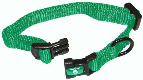 Hamilton 3/8″ Adjustable Dog Collar, Extra Small, Fits 7″-12″, Green, My Pet Supplies