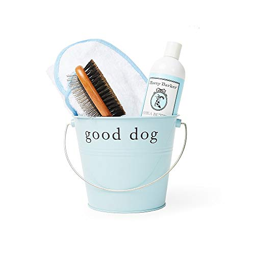 Harry Barker Dog Spa Day Gift Set: Includes 100% Cotton Terry Cloth Robe, Bamboo Brush, Shea Butter Shampoo/Conditioner, Recycled Steel Gift Bucket (M, Blue)