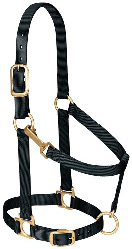 Weaver Leather Basic Adjustable Nylon Halter, Black, 1