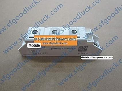 Amazon.com: Laliva SKMD42F12 Fast Diode Module 1200V 42A ...