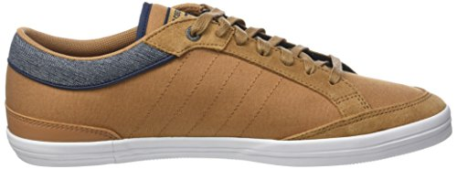 Sugar Feretcraft Marrone Sneaker Cvs Uomo Tones 2 Sportif Le Coq Marron Brown vfEZq