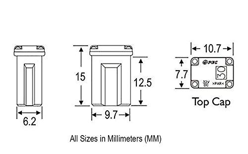 10 Flosser 608820 20 Amp Micro Cartridge Fuses FMM MCASE Type