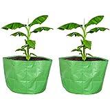 "COIR GARDEN Terrace Gardening HDPE Grow Bags Bigger Sizes for Banana, Papaya Plants, Big Plants, 250 GSM (24""x24"" inches…"