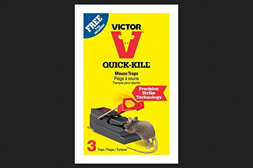 Victor Mouse Trap 3 / Pack ()