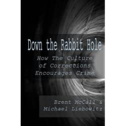 Down the Rabbit Hole: How the Culture of Corrections Encourages Crime