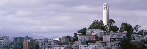 Walls 360 Peel & Stick City Skyline Wall Mural Coit Tower On Telegraph Hill San Francisco (48 in x 16 in)