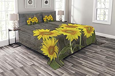 Ambesonne Sunflower Bedspread, Helianthus Sunflowers Against Weathered Aged Fence Summer Garden Photo, Decorative Quilted 3 Piece Coverlet Set with 2 Pillow Shams, King Size, Brown Yellow Green