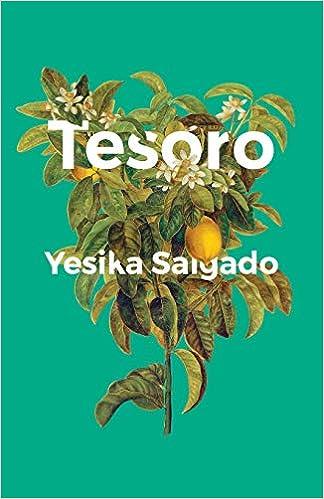 Amazoncom Tesoro 9781945649233 Yesika Salgado Books