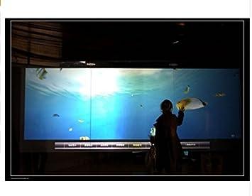 GOWE - Lámina táctil LCD de 84 pulgadas con 6 puntos interactivos ...