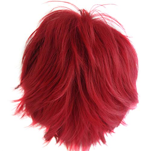 Alacos Anime Wig Burgundy Wine Red Hair Cosplay Man Short Anime Wig +Wig -
