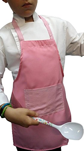 (Gingham Pink Deluxe Apron Kids Children Fits 2-7 Yr Olds 15x21 Fabric)