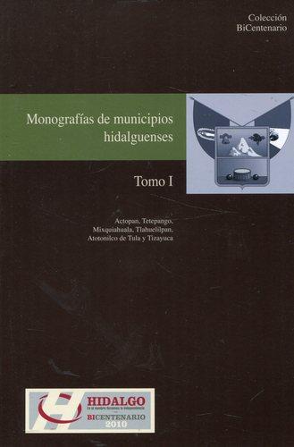 Actopan, Tetepango, Mixquiahuala, Tlahuelilpan, Atotonilco de Tula y Tizayuca (Monografias de municipios hidalguenses, Tomo I) PDF