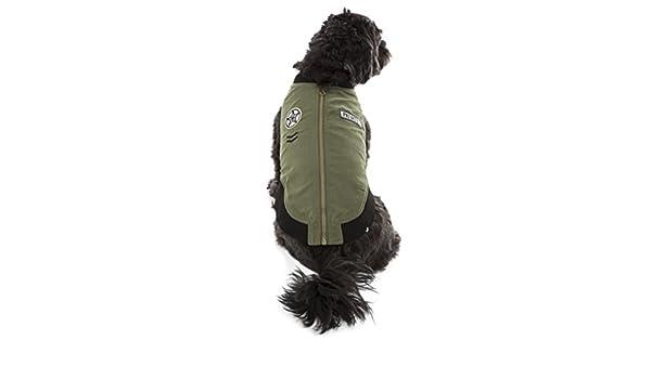 Hotel Doggy Military Bomber - Chaqueta: Amazon.es: Productos para ...