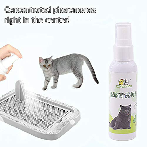 Potty Training Aid Spray for Puppies and Dogs Pet Toilet Training Spray Dog Props Inducer ()