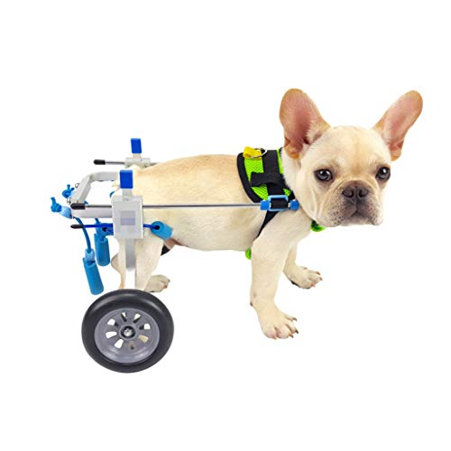 (ZJMCWCJ Dog Wheelchair, Hind Limbs, Disabled Dog Bracket, Hind Leg Assisted Scooter, Multi-Size (Size : M))