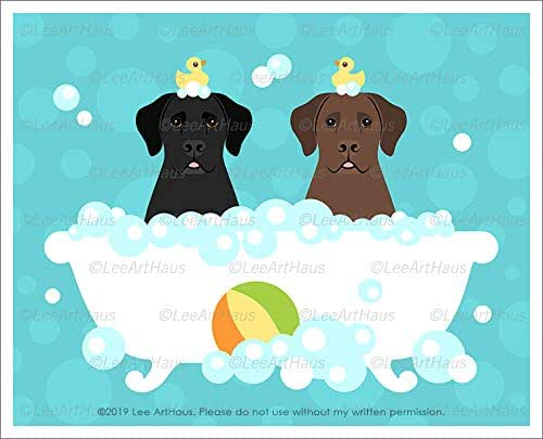 Amazon.com: 784D - Black Labrador and Chocolate Labrador