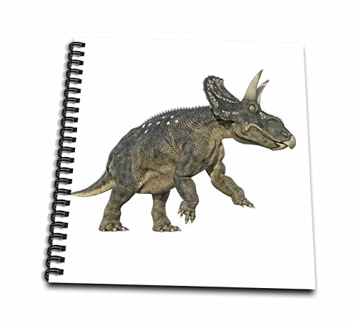 3dRose Boehm Graphics Dinosaur - Diceratops on hind legs about to Attack - Drawing Book 8 x 8 inch (db_268043_1) (About Dinosaurs Drawing)
