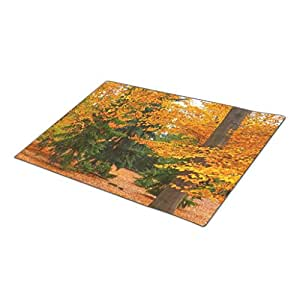 B.R.Z Front Door Mat Nature Red Leaves Park