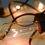 10-Pack Edison Light Bulbs, 7-watt E17 Screw Base