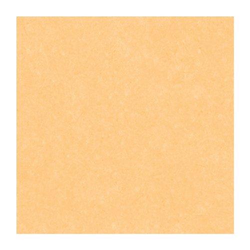 York Wallcoverings expresiones Color textura 8 x 10 papel pintado la muestra de notas aroma a naranja