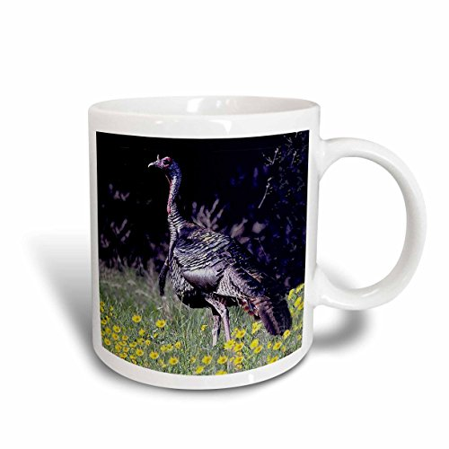 Turkey 15 Ounce Mug - 5