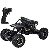 LBLA 1:16 2.4Ghz Rechargeable RC Monster Truck
