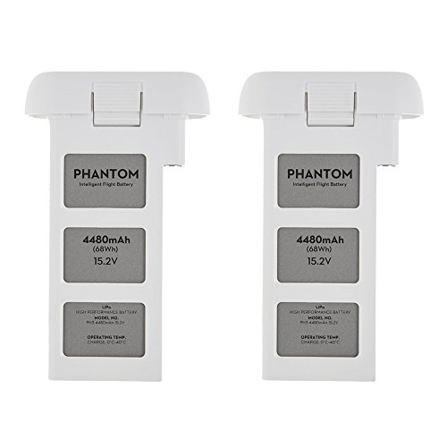 DJI Phantom 3 Quadcopter Drone 4480mah Intelligent Flight Battery 2-Pack Bundle by DJI