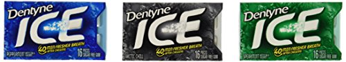dentyne-ice-mint-variety-gum-12-count