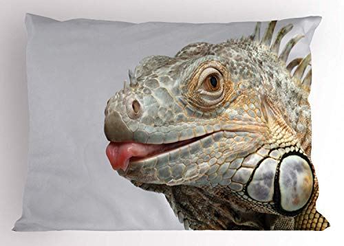 HFYZT Iguana Pillow Sham, Green Iguana Showing Tongue Nature Photography Realistic Animal Design, Decorative Standard Queen Size Printed Pillowcase, 18 X 18 inches, Pale Sage Green White