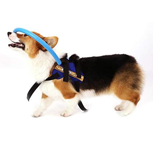 Guía para perros ciegos arneses para perros ciegos, dispositivo ...